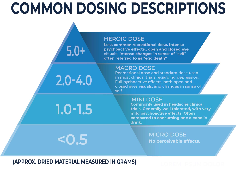 psilocybin dosing